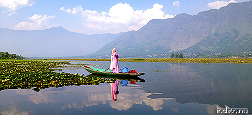 Dal-lake i Srinagar